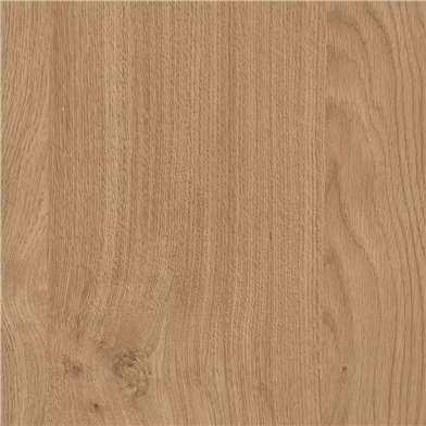 Natural Kendal Oak Sample Door